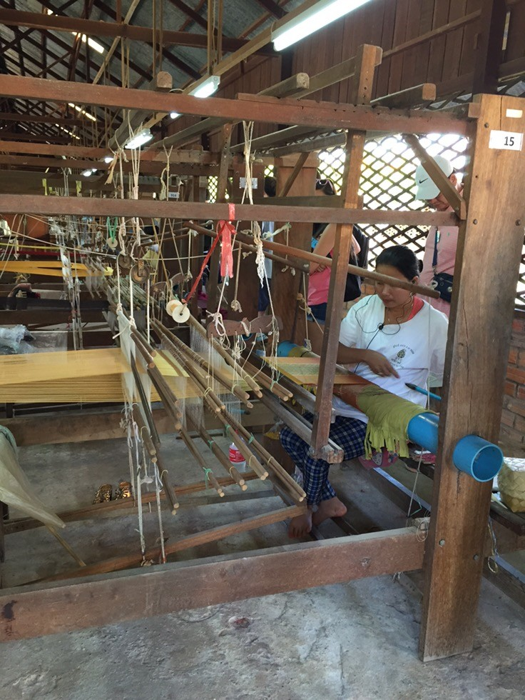 Where Does Silk Come From?